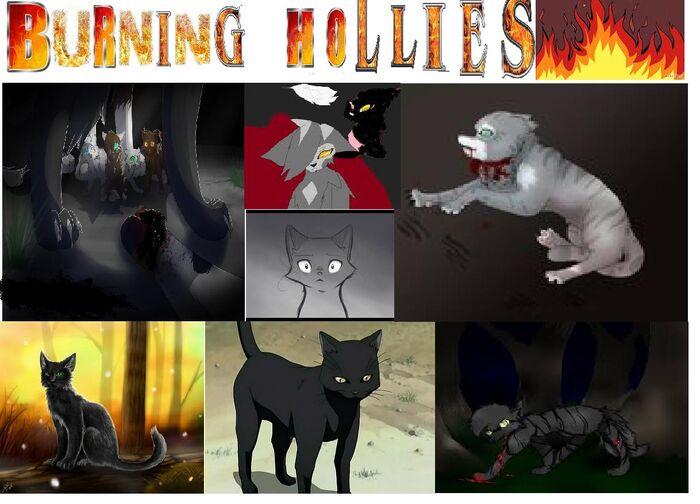 BURNING HOLLIES