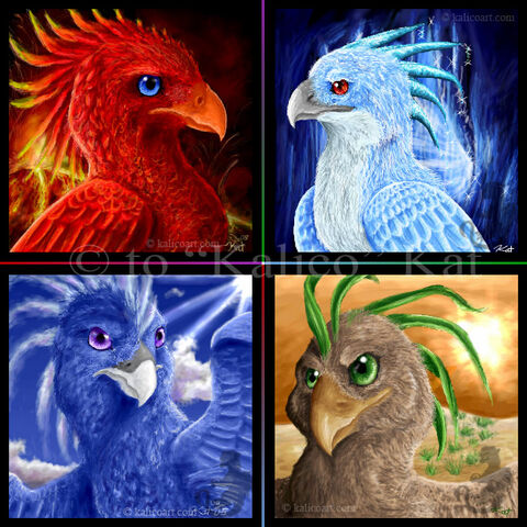 File:Phoenix of the Elements by kalicothekat.jpg