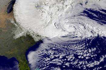 File:Sandy.jpg