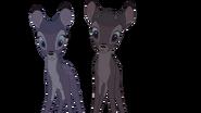 Bambi and faline cel