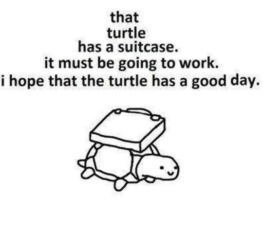 File:Working Turtle.jpg