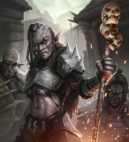 File:Orc Matriarch.jpg