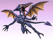 Ridley is too small