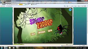 Spider zapper