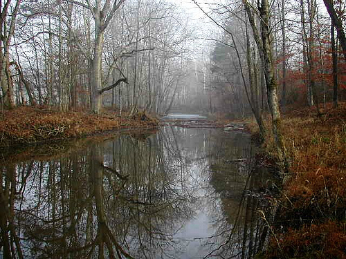 Lower Russell Creek