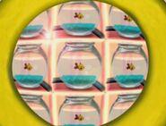 Kaleidoscope Goldfish