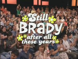 Still Brady All These Years