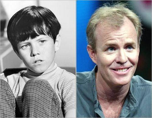 File:Bobby-Brady-Then-and-Now-the-brady-bunch-4752152-500-387.jpg