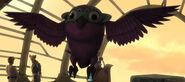 Unidentified Kiros bird