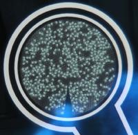 Nano-droids