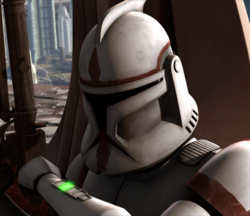 Unidentified clone coruscnat guard-HC