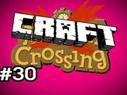 Craftcrossing