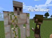 Hank and danz