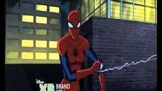 Ultimate Spider-Man Season 3 Spidey meets Spider-Girl