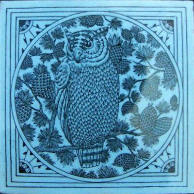 Owl minton hollins