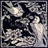 Seven Ages of Bird Life - The Scholar