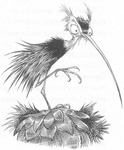 Urchinbird