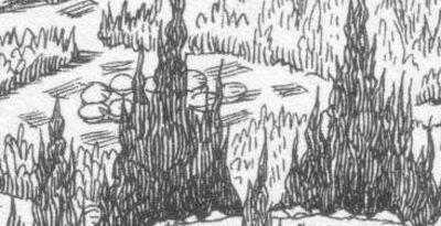 Treegoblincolonies