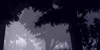 Millennium Tree Forest