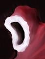 Thumbnail for version as of 02:17, September 27, 2015