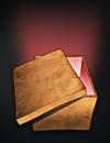 File:Crimsonbook.png