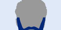 Dan's Beard