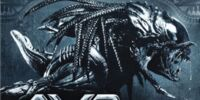 Episode 16: Alien vs. Predator: Requiem