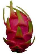 File:Dragonfruit.png