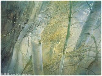 Treebeard-port