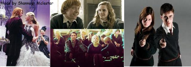 File:Fleur&Bill Ginny&Harry Hermione&Ron Luna&Neville.png