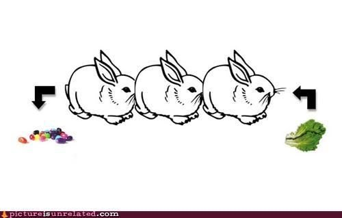 File:Lolbunnies.jpg