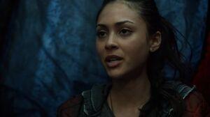 RavenTent 1x10