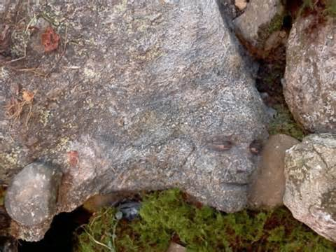 File:Peeta Camouflaged.jpg