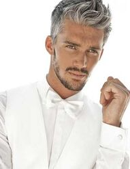 Classic-Mens-Hairstyles