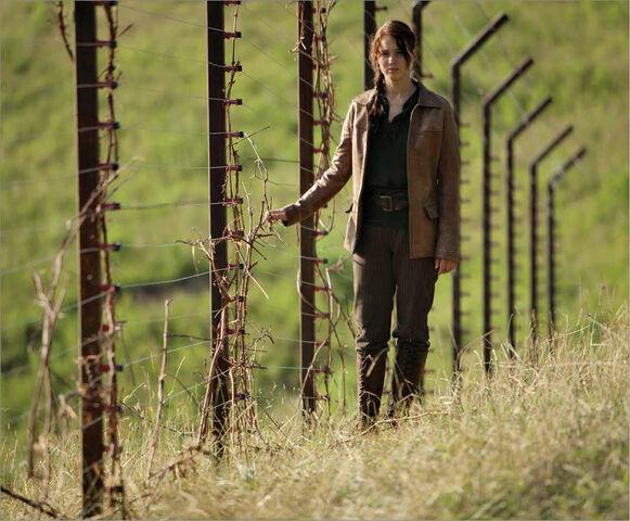 File:D12 fence.jpg