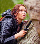 Katniss knife