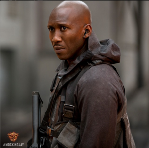 File:Thg-mockingjay-boggs.png