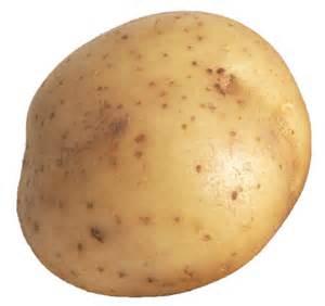 File:Potato2.jpg
