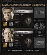 District 12 Tributes
