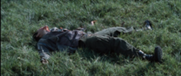 File:181px-D10 male killed by Cato.PNG