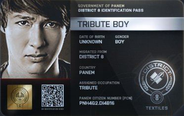 File:District 8 Tribute Boy ID Card 2.png