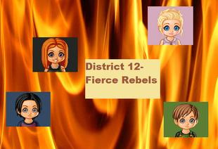 District 12 Banner