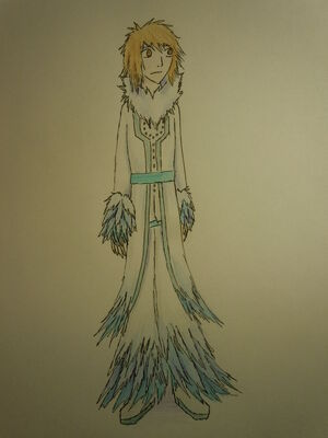 Silks outfit