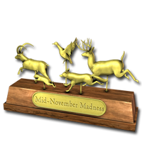 November madness 2014 gold