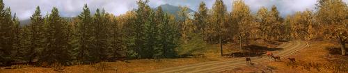 Header image exploration 6