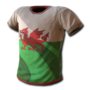 National shirt 24