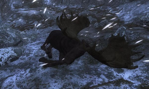 Kyrstally 215 Melanistic Moose