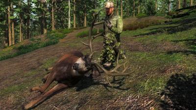 Trophy nt blacktail deer