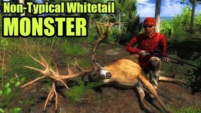 TheHunter Non-Typical Whitetail MONSTER