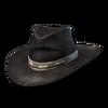 Cowboy hat 02
